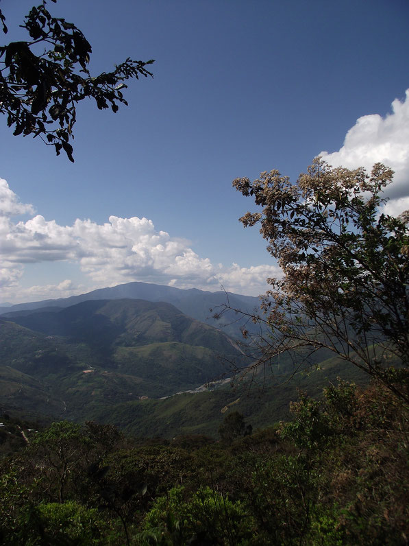 Mountains, Coiroco, Yungas, Bolivia