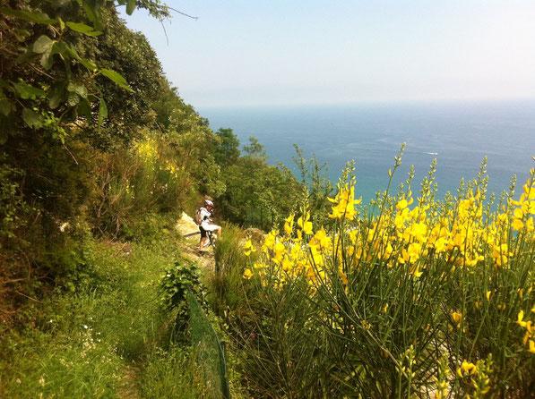 ci lanciamo a caso in un sentiero ANA...si rivelerà un scoop...panorami mozzafiato...