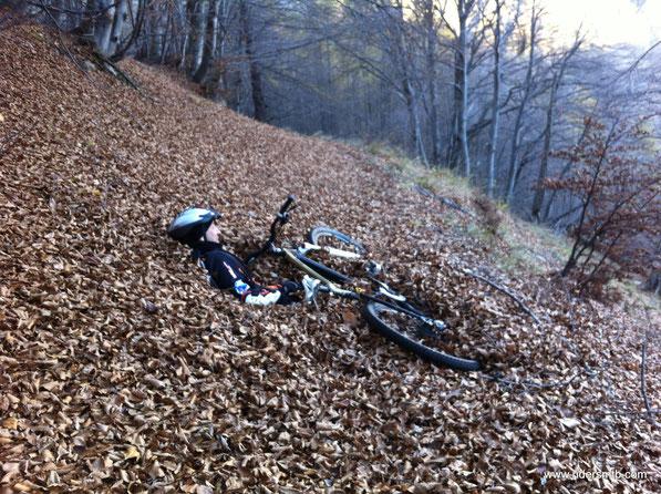 si entra nel bosco è la pedalata diventa quasi difficile.....riteniamo che non è un giro prettamente autunnale