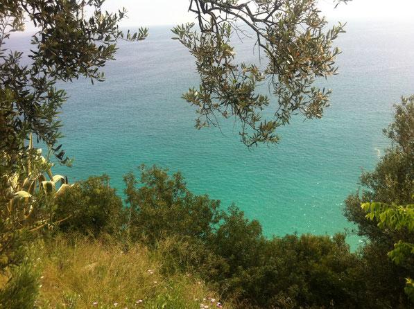 La Liguria non delude mai.....