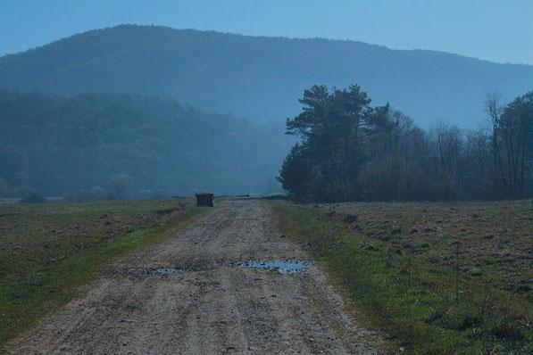 Droga do Nieznajowej. Fot. Bartłomiej Wadas, www.beskid-niski.pl