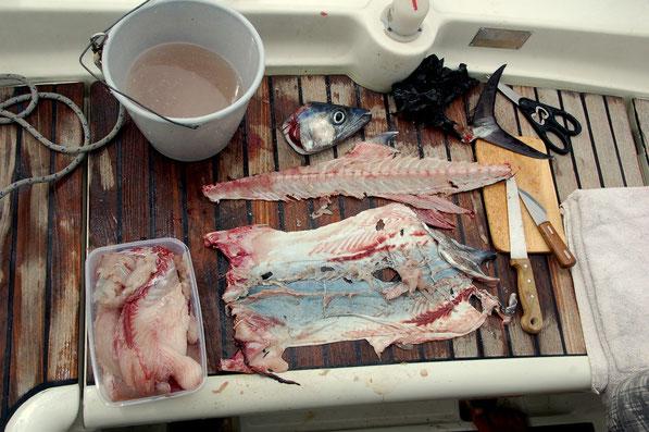 Man bekommt mit der Zeit ein Gefühl für die richtige Technik, zum Zerlegen von Fisch. Learning by doing !!