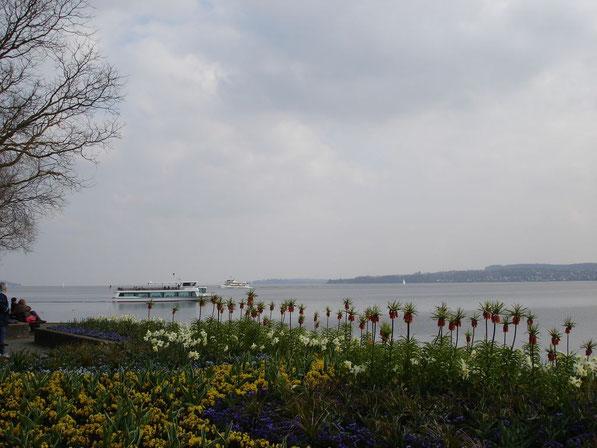 Bodensee entre Überlingen et Mainau