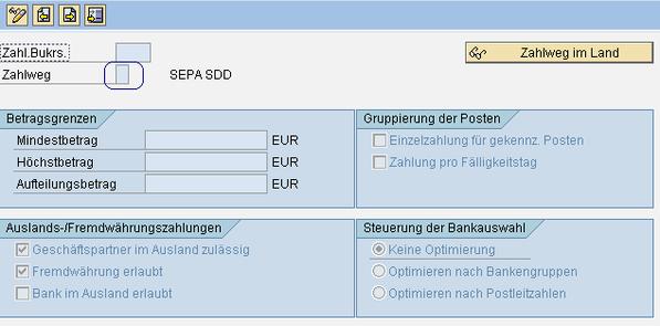 SEPA SAP Buchungskreis