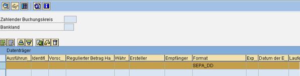 SEPA SAP Zahllauf durchführen