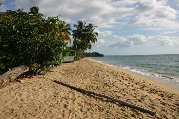 Rincon Puerto Rico Corcega Beach