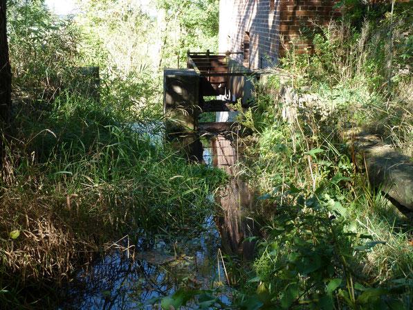 Wassermühle bei Mühlenbruch