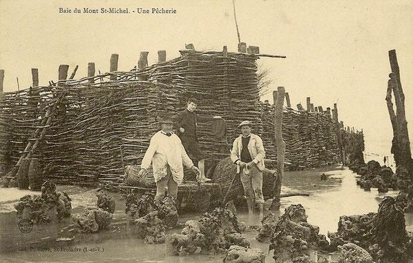 Pêcherie en fascines de bois en  baie de Cancale vers 1900