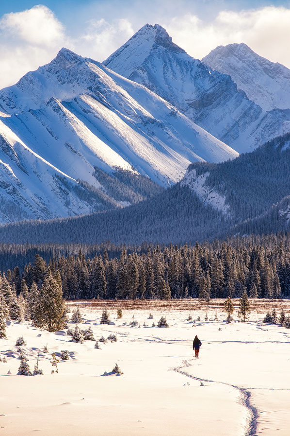 Moose meadows in Kananaskis country @InAFaraway_Land