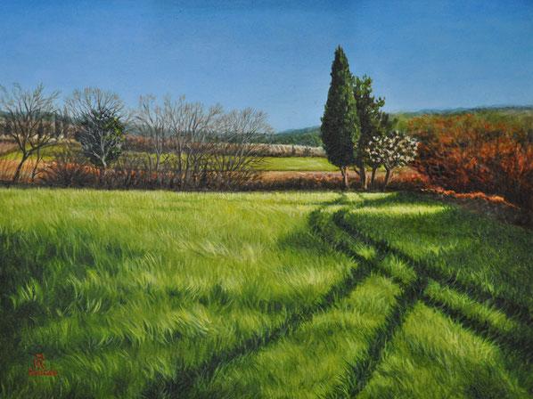 art-figuratif-paysage-uzege-champ-ble-peinture