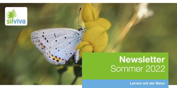Newslettercover Herbst 2017
