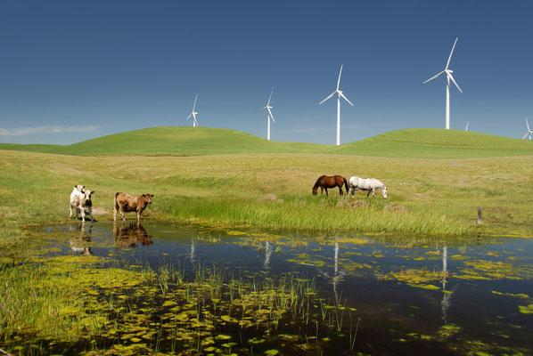 Ein Nachhaltigkeitsbericht kann ein Wunschbild der Zukunft zeichnen - und aufzeigen, wie das Unternehmen zu dieser Zukunft beiträgt.