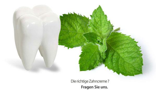 Prophyalxe Zahnarzt in Wilmersdorf