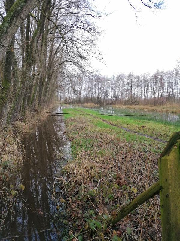 Op 4 februari 2021 nog steeds hoog water. De Zompesloot staat nog in open verbinding met de Zompewei.