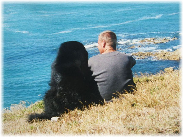 Küste der Bretagne Urlaub mit Hund im Finistere