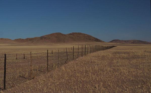 Endlose Zäune in der Savanne, ein Problem für viele Herden, die weit wandern, um ausreichend Gräser zu finden   - Foto copyright: P. Ludwig-Sidow