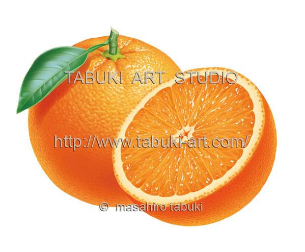 オレンジ RD_10516
