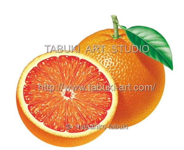 ブラッドオレンジ RD_10517