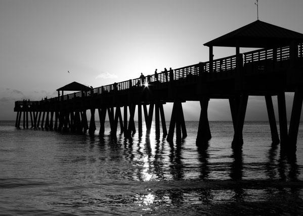 Juno Pier | United States