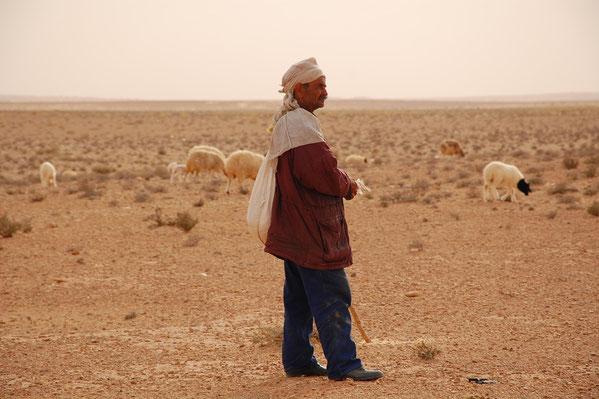 Berger dans le désert.