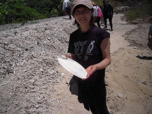 コウイカの骨の写真