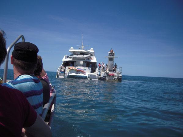 ボートから見た停泊中のフェリーの写真