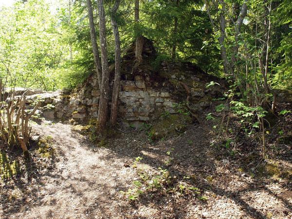 Ruine Wildenstein - Hausen bei Rottweil