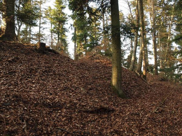 Reste der ehem. Burg Beuren / Vöhringen