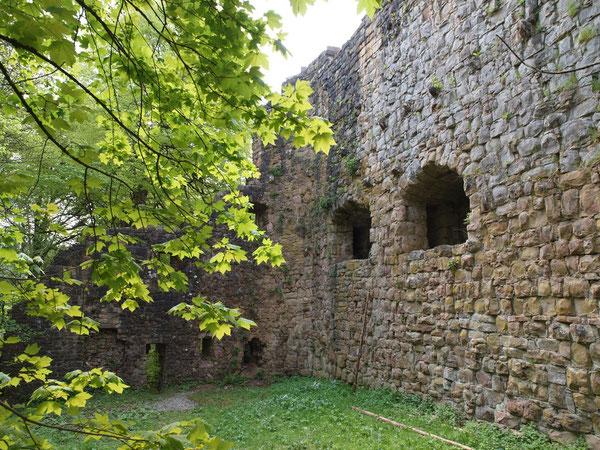 Ruine Lichtenfels / Leinstetten