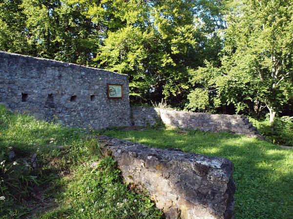 Ehemaliger Palas, Ruine Waseneck