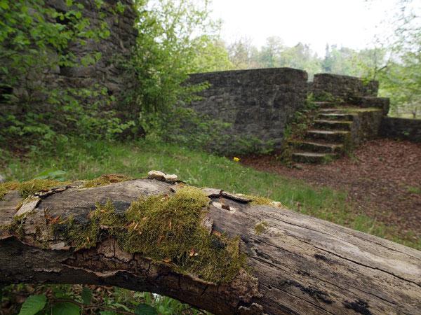 Wilde Natur, Ruine Irslingen