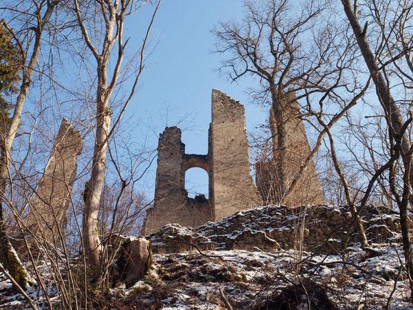 Blick auf Ruine Neckarburg / Rottweil