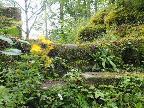 Stufen bei der Ruine