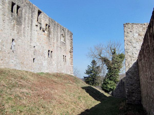 Burg Albeck / Sulz a. N.
