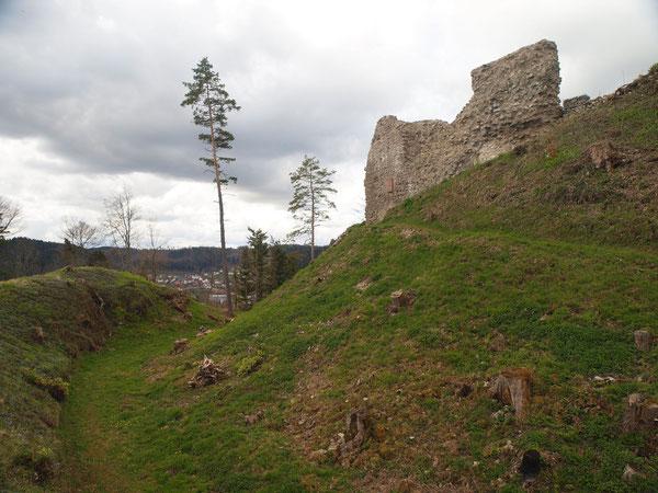 Ruine Schenkenberg / Epfendorf