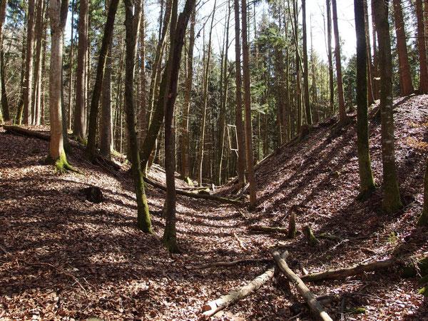 Gut sichtbar: der Burggraben