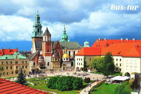 перевозки поездки в Краков Польша, из Кракова