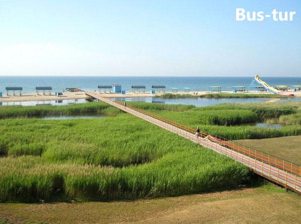 Автобус поездки перевозки  Днепропетровск – Приморск