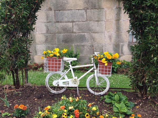 Preghiera, gioia, ringraziamento, nel pellegrinaggio in bici a Markl am Inn, paese natale di Papa Benedetto XVI