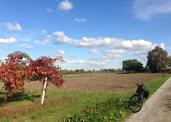 Castelfranco Emilia, lungo via San Donnino