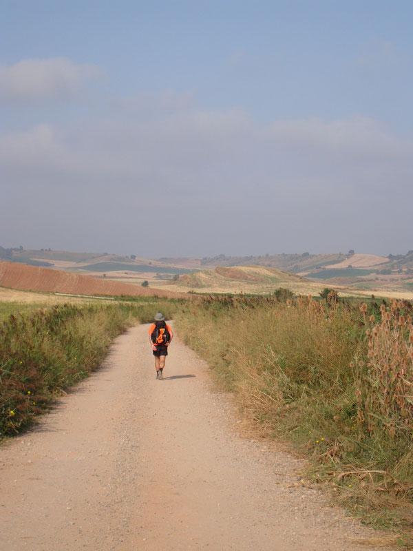 """Settembre 2008. Cammino di Santiago, nelle solitarie """"mesetas"""",  fra Burgos e Leon. Foto Antonio Penzo"""