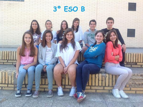 3º B 2015-2016