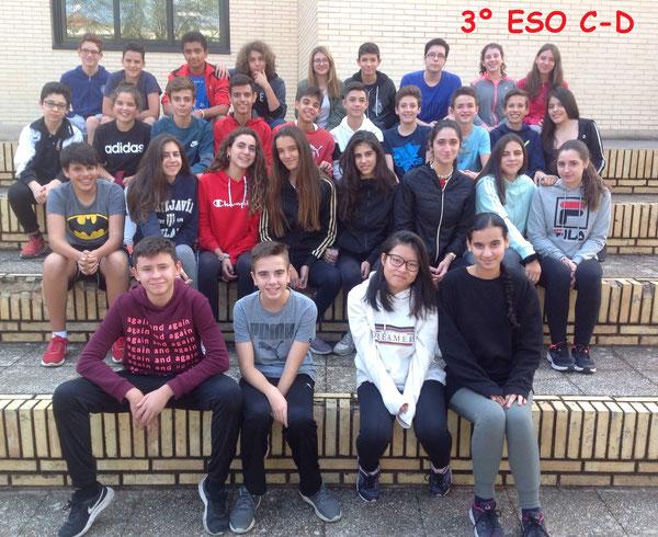 3º ESO C-D 2018-2019