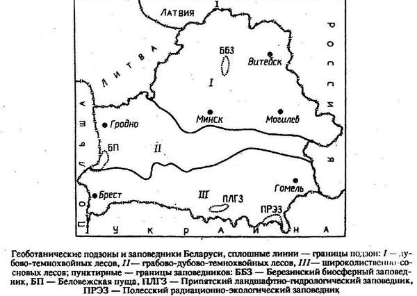 Подзоны Беларуси