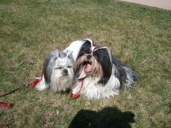 Lily et Danaé 29 mars 2012