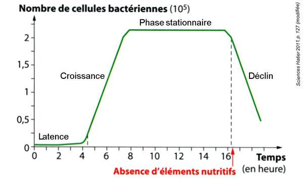 Graphique de l'éolution du nombre de bactéries dans le corps après une contamination en fonction du temps.