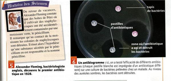 Le rôle des antibiotiques. Sources: Belin, SVT, 2008.