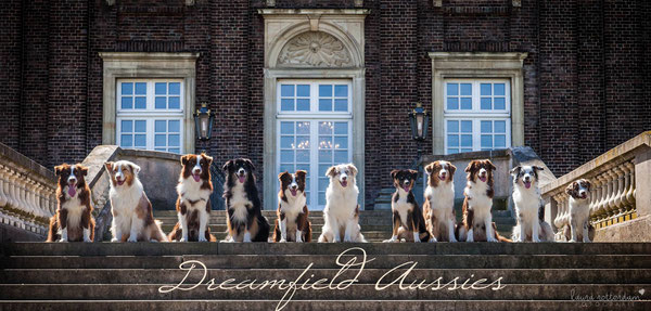 von links nach rechts: Neo, Bailey, Juri, Hunter, Juno, Mylie, Lou, Nova, Mila, Shanou, Anouk