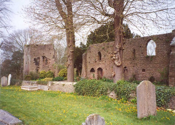 Part of Tiverton Castle, Tiverton - geograph.org.uk - 649892.jpg