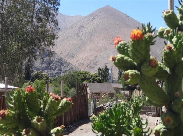 Im Ort Pisco Elqui